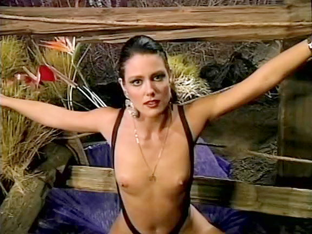 Jeanna fine and peter north excellent cumshot 7